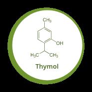 thymol icon