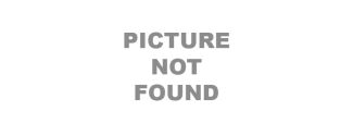 Polarized Stereo Glasses