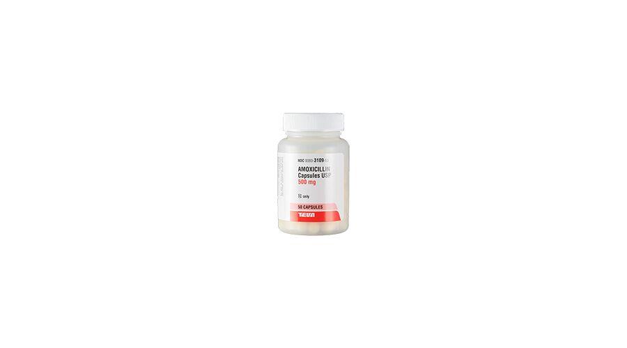 AMOXICILLIN 500MG CAPS 50CT NDC 00093-3109-53