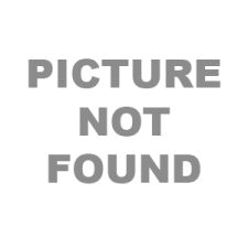 Perimeter Bulb 41328 6V 4.5 Amp for Haag Streit Projection/Marco Projection (Generic)