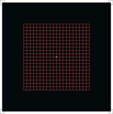 Red on Black Amsler Chart
