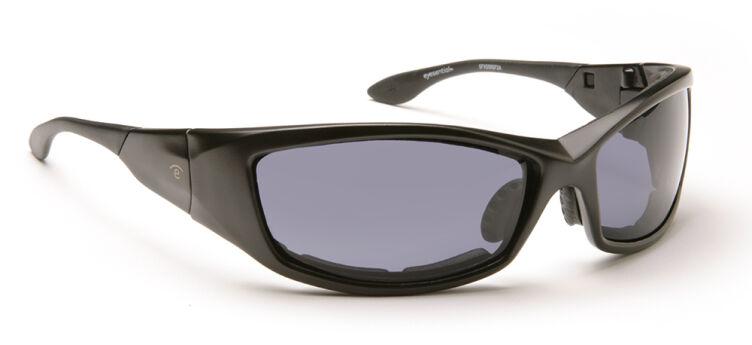 Black Frame/Smoke Lenses