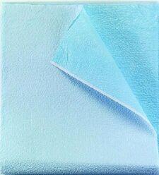 Drape/ Stretcher Sheet