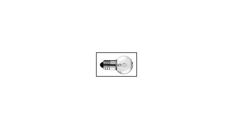 Foster Torch Bulb