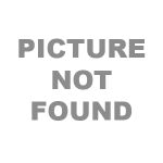 "Medline Sterile Oval Eye Pads, 2 1/8"" x 2 5/8"""